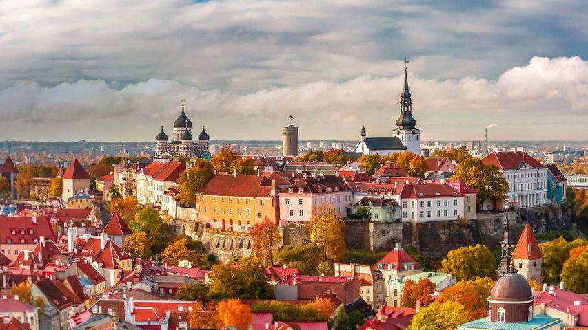「タリン旧市街」エストニア