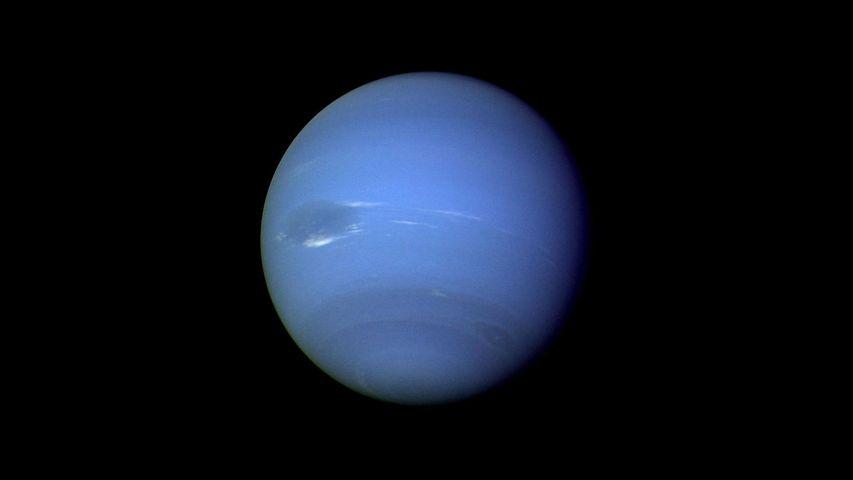 「海王星」