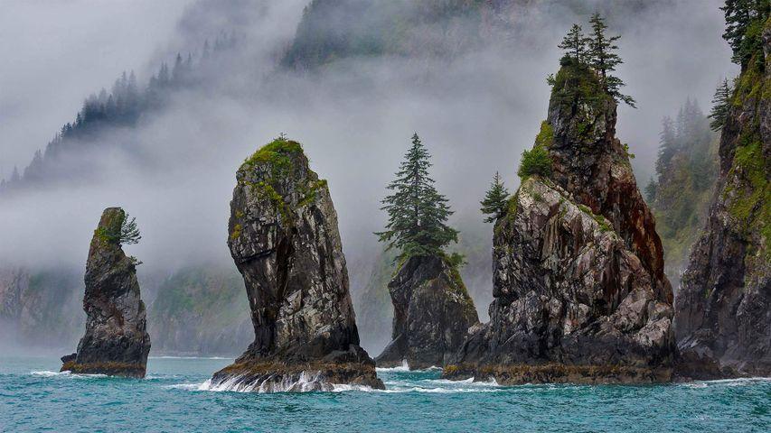 「コーブ・オブ・スパイア」米国アラスカ州, キーナイ・フィヨルド国立公園