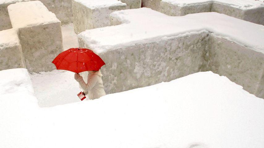 「雪の大迷路」北海道, 札幌