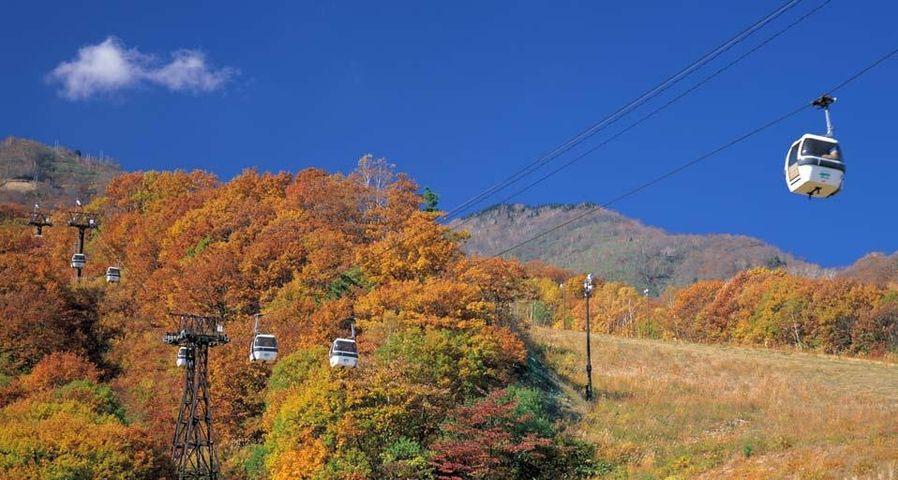 「栂池自然園」長野, 小谷村