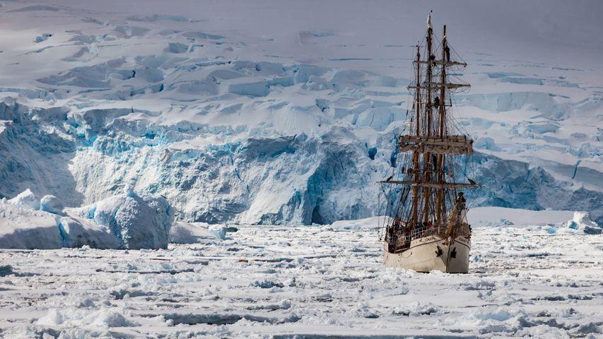 「ペノラ海峡を進むヨーロッパ号」南極半島, 南極
