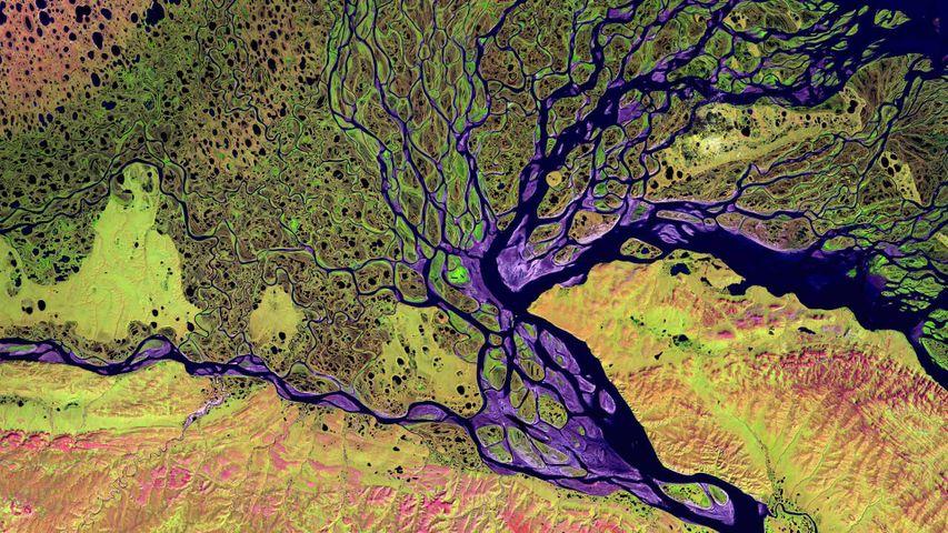 「レナ川デルタ」ロシア, サハ共和国