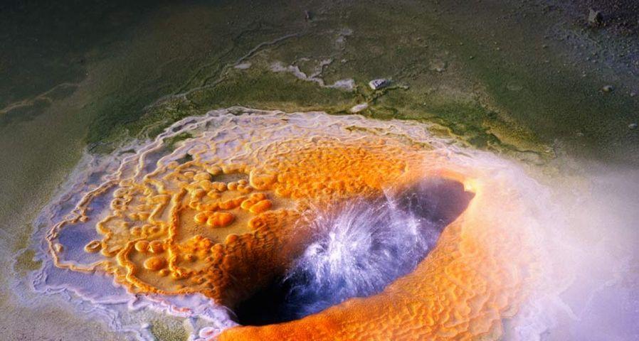 「ポースリンテラスの温泉池」アメリカ, ワイオミング州, イエローストーン国立公園