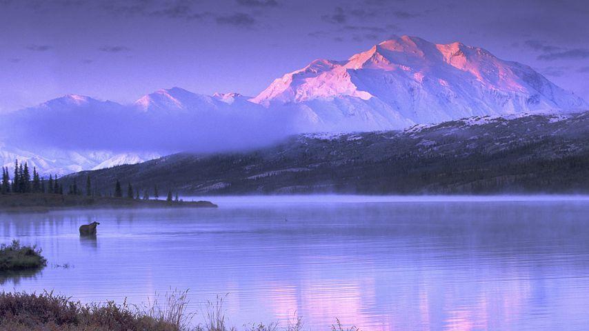 「ワンダー湖」アメリカ, アラスカ州