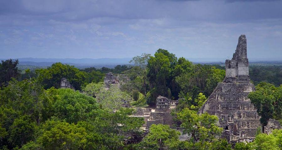 「マヤ遺跡」グアテマラ, ティカル