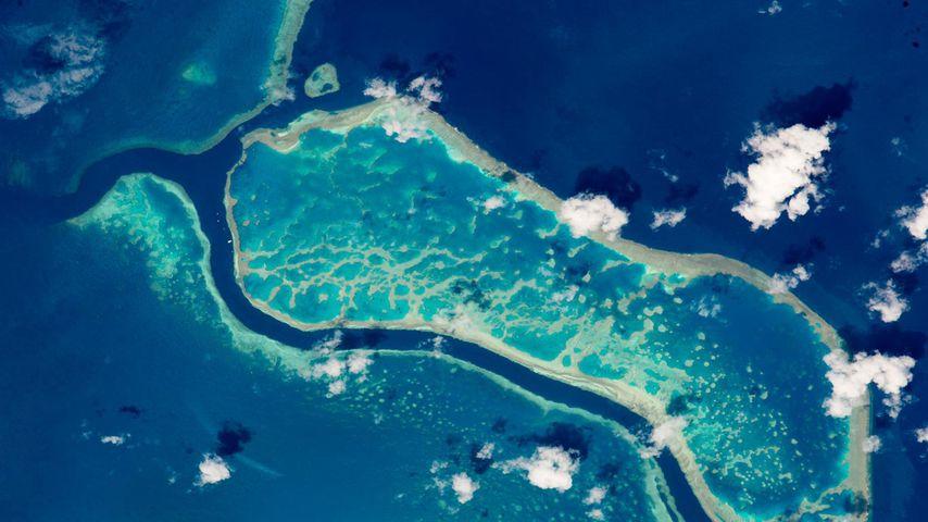 「ISSから見たグレート・バリア・リーフ」オーストラリア