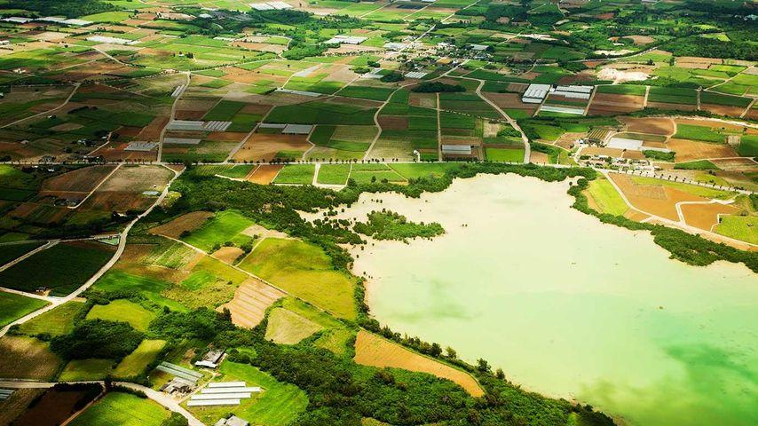「サトウキビ畑」沖縄県, 宮古島