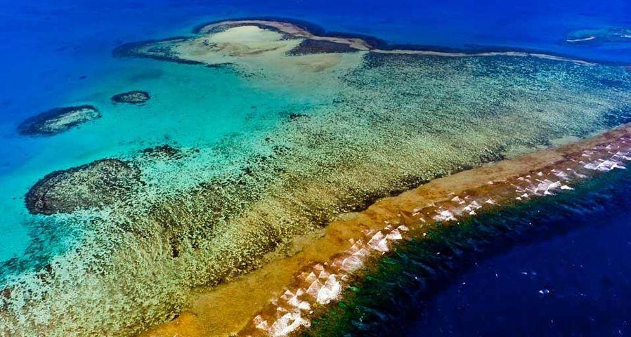 「ニューカレドニアのサンゴ礁」