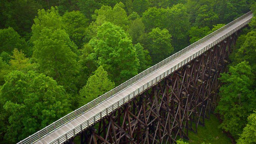 「トレッスル橋」アメリカ, バージニア州
