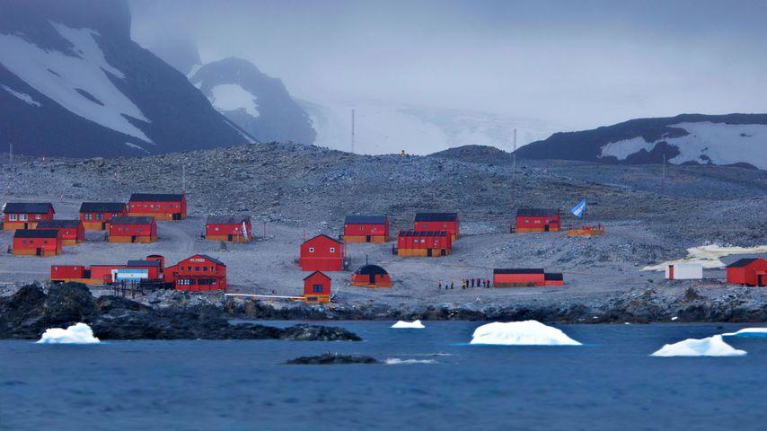 「エスペランサ基地」南極