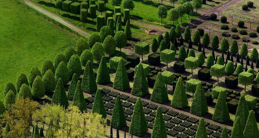 「トピアリーの苗床」ドイツ, ニーダーザクセン州, レーア