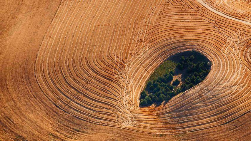 「パルース丘陵の農場」米国ワシントン州