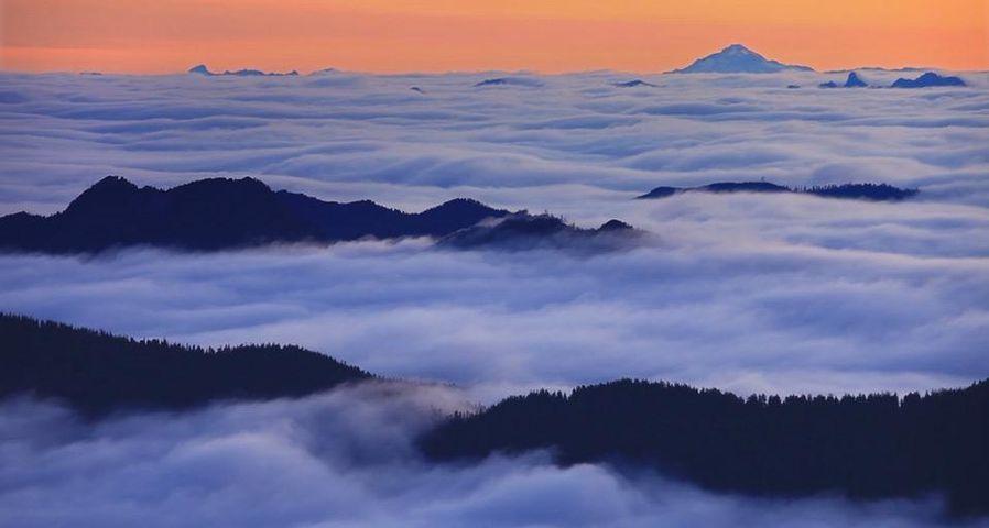 「霧のレーニア山国立公園」アメリカ, ワシントン州