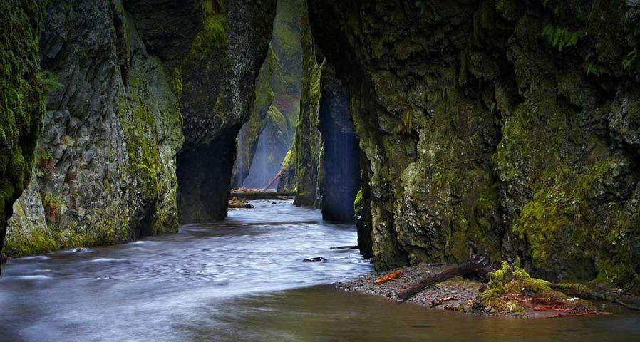 「オネオンタ渓谷」アメリカ, オレゴン州, コロンビア川