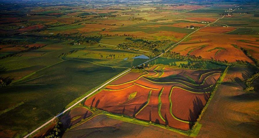 「アイオワの農場」アメリカ, アイオワ州