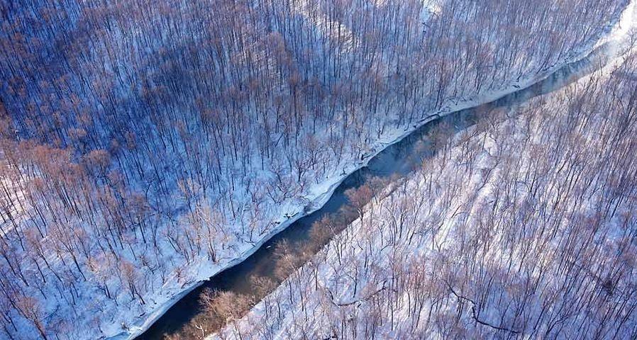 「冬の小川」アメリカ, バージニア州