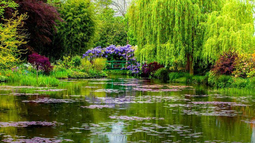 「モネの庭」フランス, ジヴェルニー