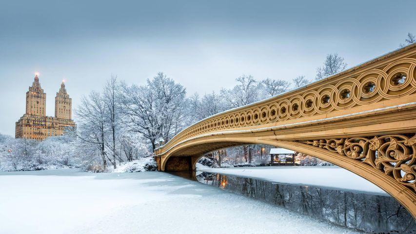 「ボウ・ブリッジ」アメリカ, ニューヨーク市