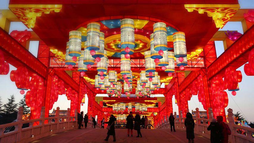 「大唐芙蓉園のランタン」中国, 西安市