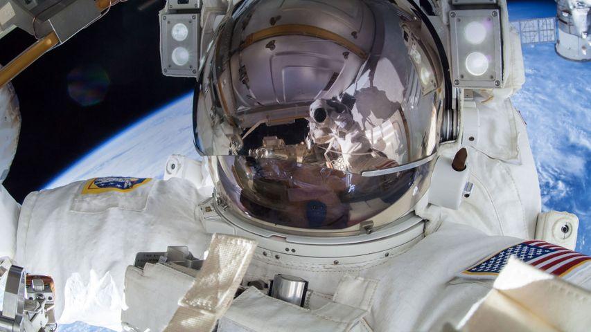「テリー・バーツ宇宙飛行士の自撮り」