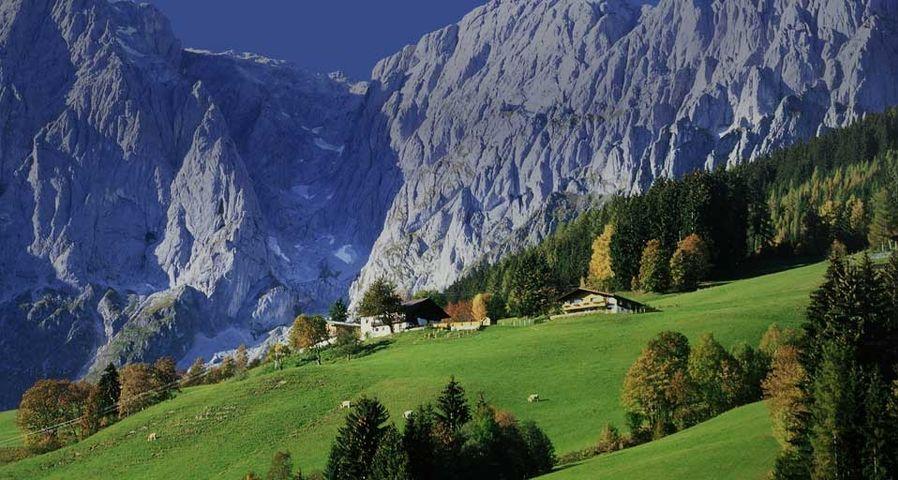 「ホッホケーニッヒと牧草地」オーストリア, ザルツブルク州