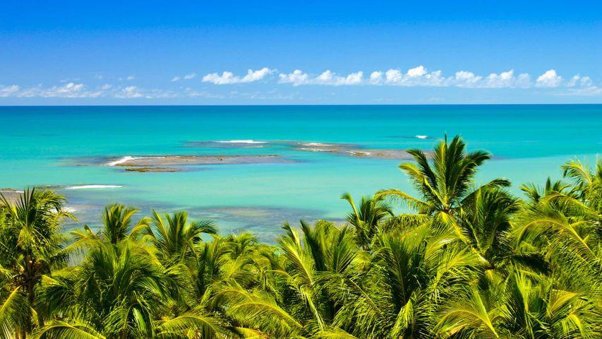 「ミラー・ビーチ」ブラジル, バイーア