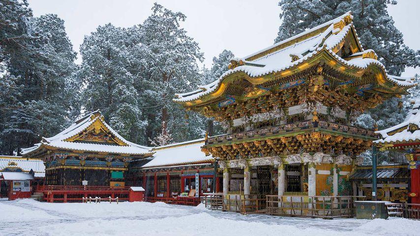「雪の日光東照宮」栃木県