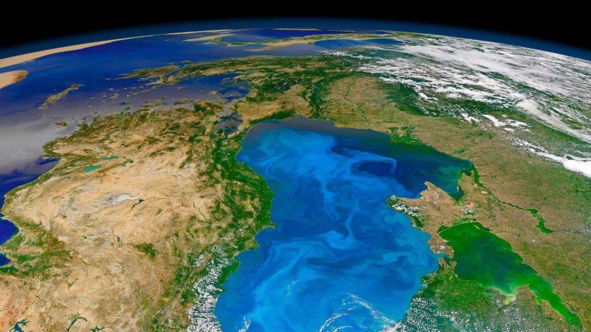 「赤潮の衛星写真」黒海