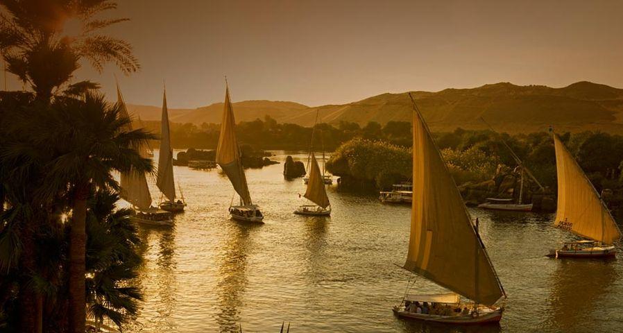 「ナイル川のファルーカ」エジプト, アスワン