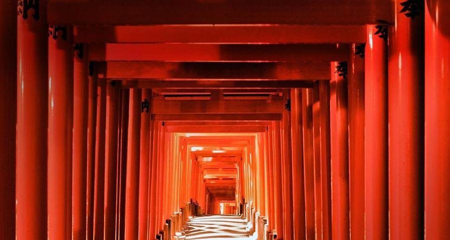 「伏見稲荷大社」京都, 伏見区