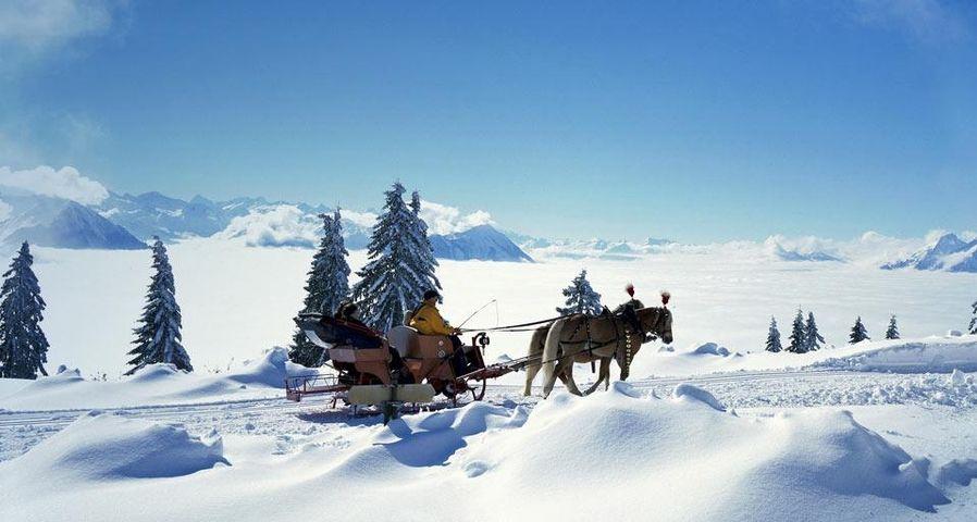 「馬ソリ」スイス