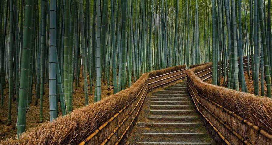 「化野念仏寺」京都, 中京区, 嵯峨野
