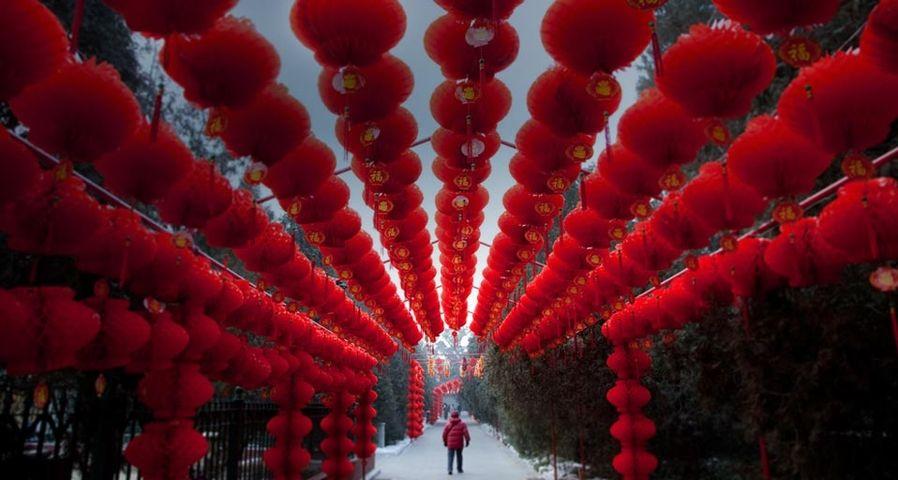 「春節」中国, 北京地壇公園