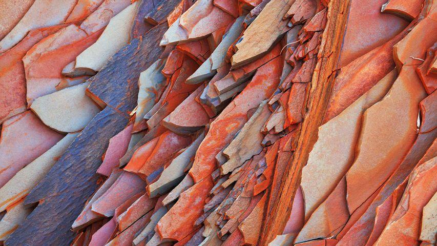「ハマースリー渓谷の岩肌」オーストラリア, カリジニ国立公園