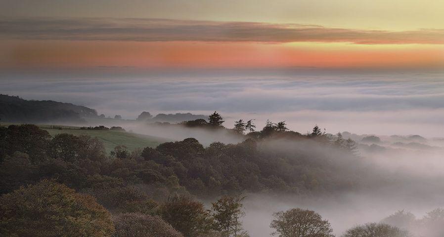 「ダートムーアの霧の夜明け」イギリス, デヴォン州, ダートムーア