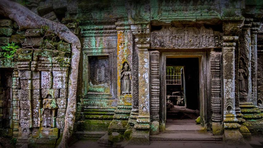 「タ・プローム」カンボジア