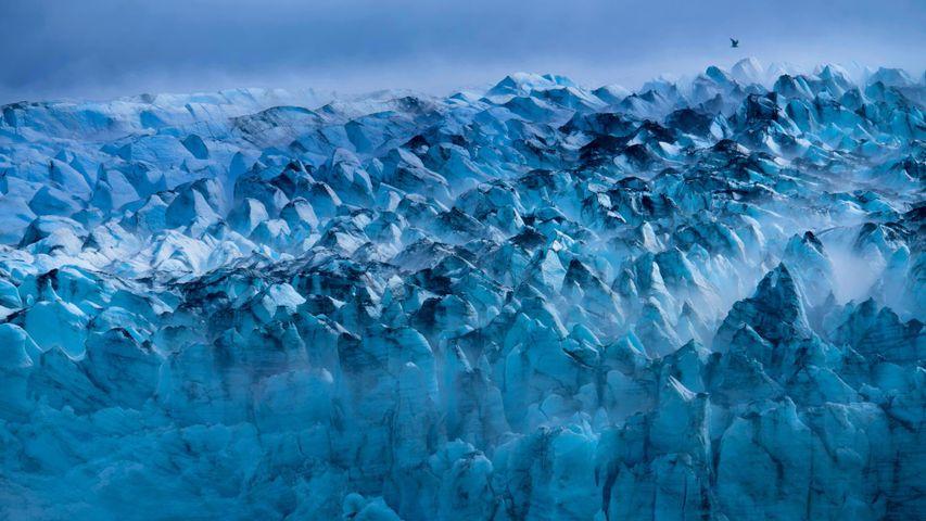 「ランプルー氷河」米国, アラスカ州
