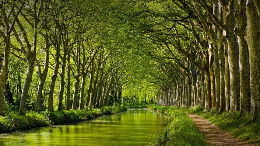 「ミディ運河」フランス, トゥールーズ