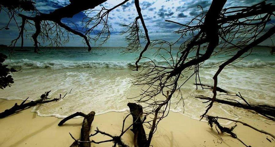「シミラン諸島の浜辺」タイ