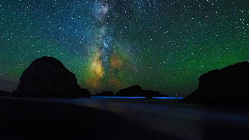 「銀河と夜光虫」アメリカ, オレゴン州