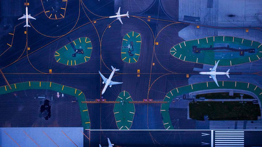 「サンフランシスコ国際空港の駐機場」米国カリフォルニア州, サンフランシスコ