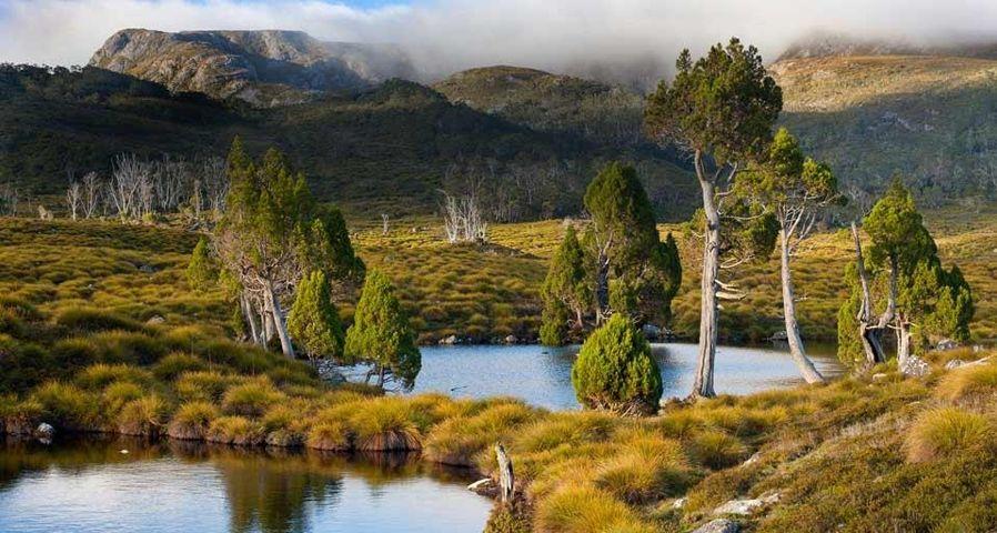「セント・クレア湖国立公園」オーストラリア, タスマニア