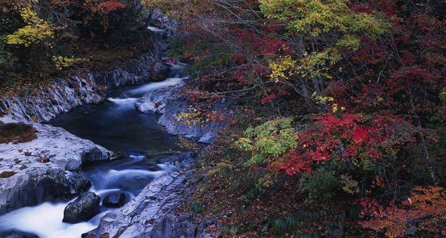 「中津川渓谷の紅葉」福島, 裏磐梯
