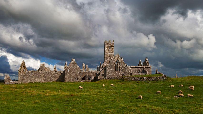 「ロス・エリリー修道院跡」アイルランド, ゴールウェイ