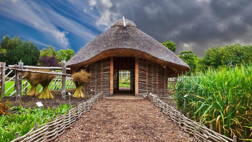 「バイキングの家」アイルランド, ダブリン国立植物園