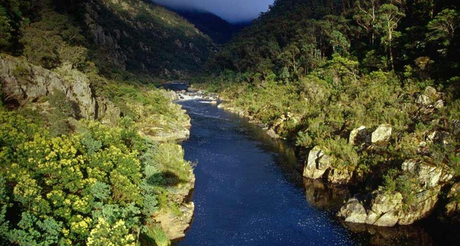 「スノーウィー・リバー国立公園」オーストラリア, ビクトリア