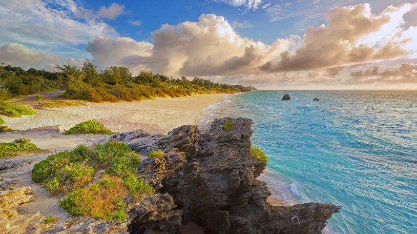 「ワーウィック・ロング・ベイ」バミューダ諸島
