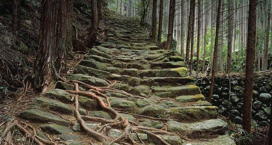 「松本峠」三重, 熊野古道