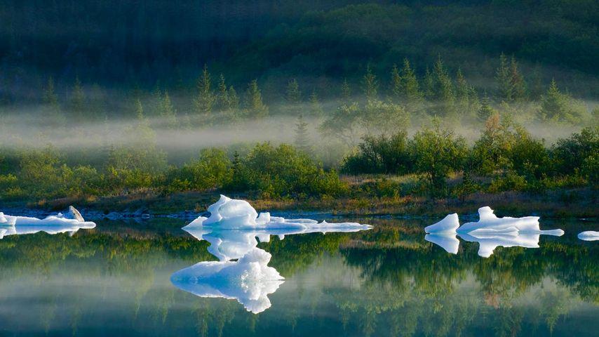 「ベア氷河湖」アメリカ, アラスカ州